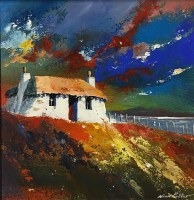 nick-potter-npr0268:194-herbridean-croft-ii-unframed